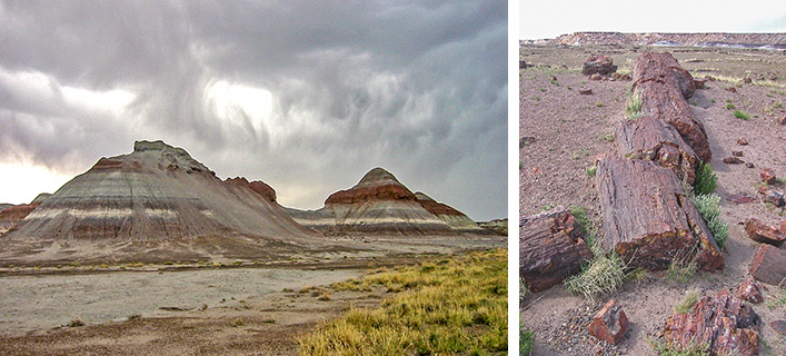 Painted Desert & Petrified Forest